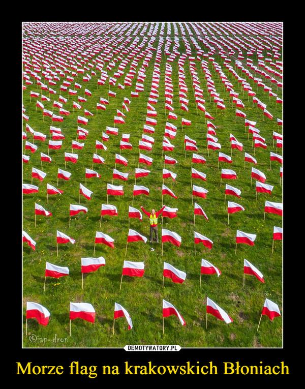 Morze flag na krakowskich Błoniach –