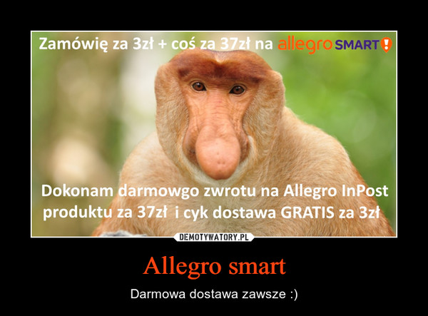 Allegro smart – Darmowa dostawa zawsze :)