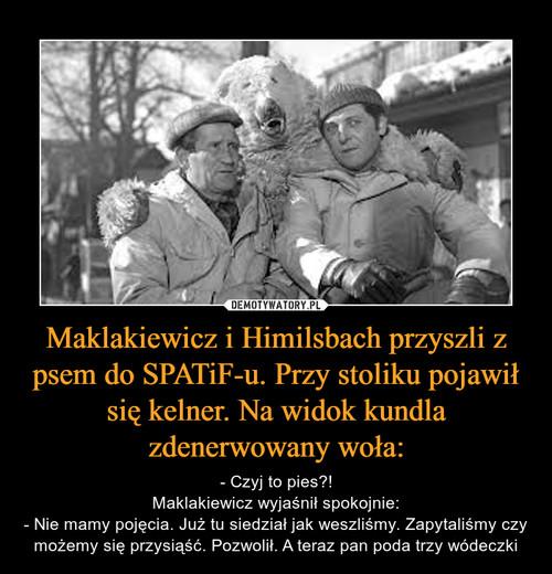 Maklakiewicz i Himilsbach przyszli z psem do SPATiF-u. Przy stoliku pojawił się kelner. Na widok kundla zdenerwowany woła: