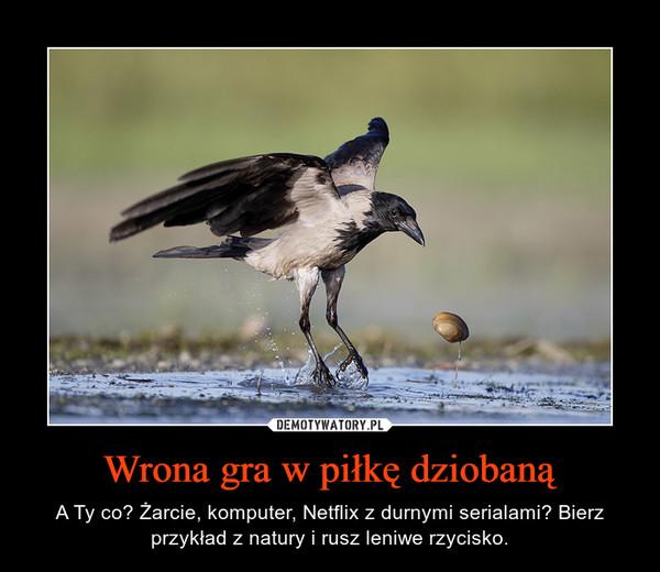 Wrona gra w piłkę dziobaną – A Ty co? Żarcie, komputer, Netflix z durnymi serialami? Bierz przykład z natury i rusz leniwe rzycisko.