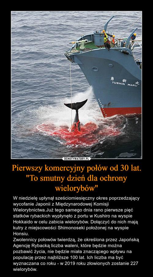 """Pierwszy komercyjny połów od 30 lat. """"To smutny dzień dla ochrony wielorybów"""""""