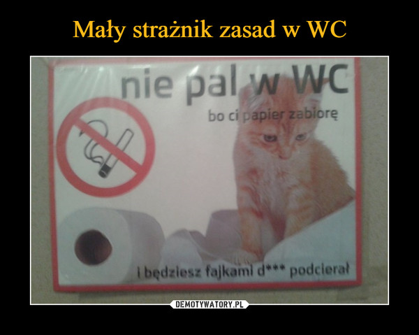 –  nie pal w WC bo ci papier zabioręi będziesz fajkami d*** podcierał