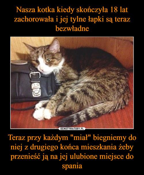 """Nasza kotka kiedy skończyła 18 lat zachorowała i jej tylne łapki są teraz bezwładne Teraz przy każdym """"miał"""" biegniemy do niej z drugiego końca mieszkania żeby przenieść ją na jej ulubione miejsce do spania"""