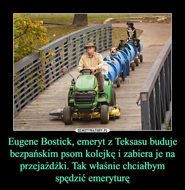 Eugene Bostick, emeryt z Teksasu buduje bezpańskim psom kolejkę i zabiera je na przejażdżki. Tak właśnie chciałbym spędzić emeryturę –