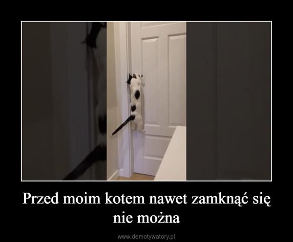 Przed moim kotem nawet zamknąć się nie można –