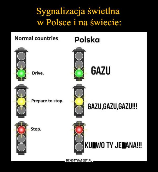 –  Normal countriesPolskaDrive. GAZUPrepare to stop.GAZU,GAZU,GAZU!!!Stop.KURWO TY JEBANA!!!