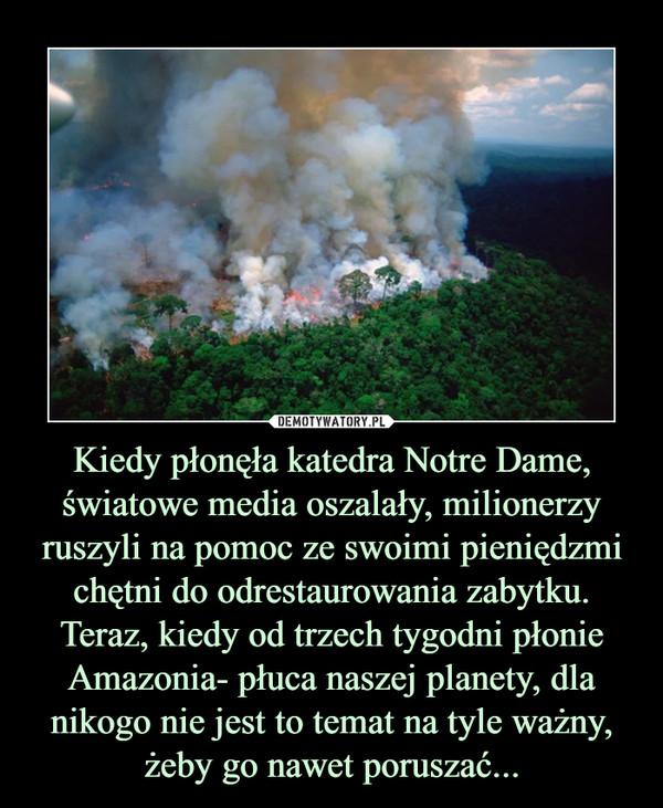 Kiedy płonęła katedra Notre Dame, światowe media oszalały, milionerzy ruszyli na pomoc ze swoimi pieniędzmi chętni do odrestaurowania zabytku. Teraz, kiedy od trzech tygodni płonie Amazonia- płuca naszej planety, dla nikogo nie jest to temat na tyle ważny, żeby go nawet poruszać... –