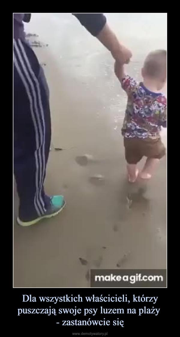 Dla wszystkich właścicieli, którzy puszczają swoje psy luzem na plaży - zastanówcie się –