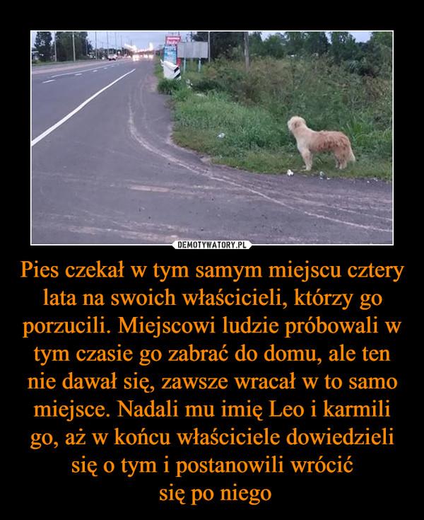 Pies czekał w tym samym miejscu cztery lata na swoich właścicieli, którzy go porzucili. Miejscowi ludzie próbowali w tym czasie go zabrać do domu, ale ten nie dawał się, zawsze wracał w to samo miejsce. Nadali mu imię Leo i karmili go, aż w końcu właściciele dowiedzieli się o tym i postanowili wrócić się po niego –