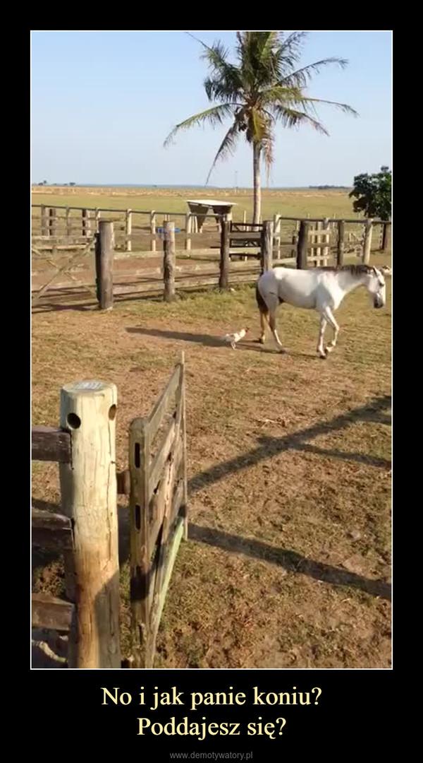 No i jak panie koniu?Poddajesz się? –