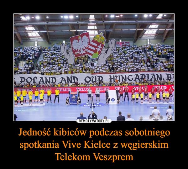 Jedność kibiców podczas sobotniego spotkania Vive Kielce z węgierskim Telekom Veszprem –