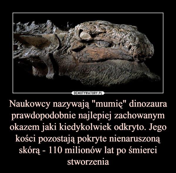 """Naukowcy nazywają """"mumię"""" dinozaura prawdopodobnie najlepiej zachowanym okazem jaki kiedykolwiek odkryto. Jego kości pozostają pokryte nienaruszoną skórą - 110 milionów lat po śmierci stworzenia –"""