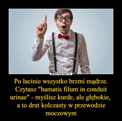 """Po łacinie wszystko brzmi mądrze. Czytasz """"hamatis filum in conduit urinae"""" - myślisz kurde, ale głębokie,  a to drut kolczasty w przewodzie moczowym"""