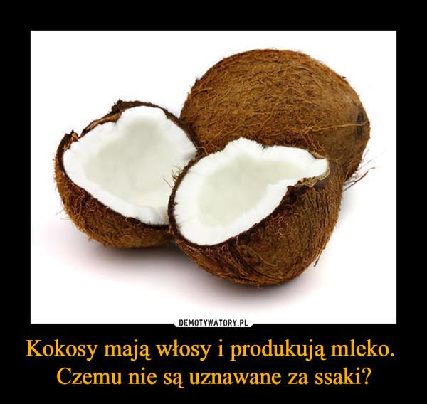 Kokosy mają włosy i produkują mleko. Czemu nie są uznawane za ssaki? –