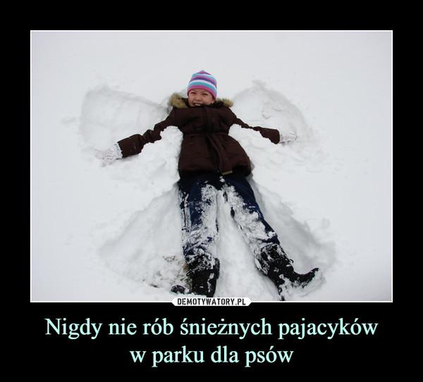 Nigdy nie rób śnieżnych pajacykóww parku dla psów –
