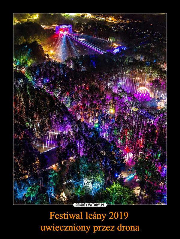 Festiwal leśny 2019 uwieczniony przez drona –
