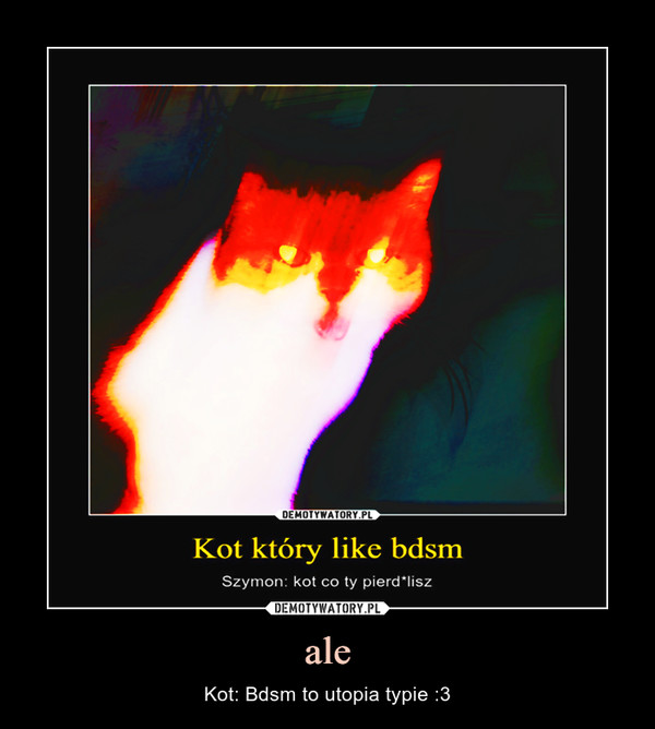 ale – Kot: Bdsm to utopia typie :3