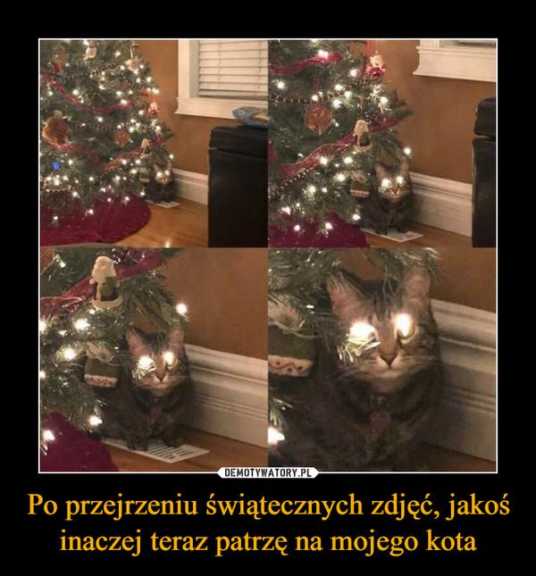 Po przejrzeniu świątecznych zdjęć, jakoś inaczej teraz patrzę na mojego kota –