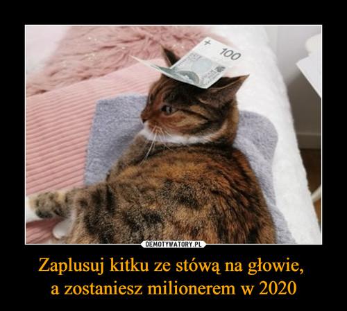 Zaplusuj kitku ze stówą na głowie,  a zostaniesz milionerem w 2020