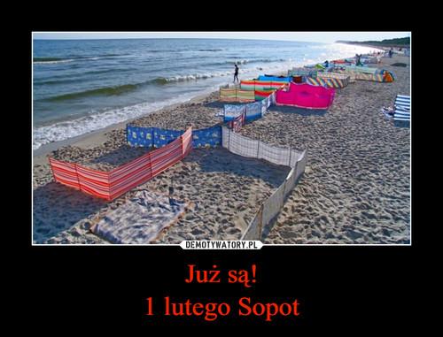 Już są! 1 lutego Sopot