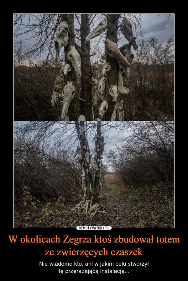 W okolicach Zegrza ktoś zbudował totem ze zwierzęcych czaszek – Nie wiadomo kto, ani w jakim celu stworzyłtę przerażającą instalację...