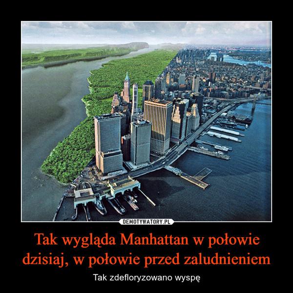 Tak wygląda Manhattan w połowie dzisiaj, w połowie przed zaludnieniem – Tak zdefloryzowano wyspę