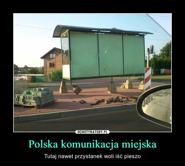 Polska komunikacja miejska – Tutaj nawet przystanek woli iść pieszo