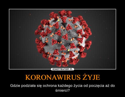 KORONAWIRUS ŻYJE