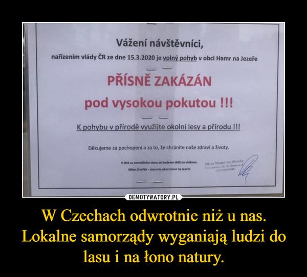 W Czechach odwrotnie niż u nas. Lokalne samorządy wyganiają ludzi do lasu i na łono natury. –