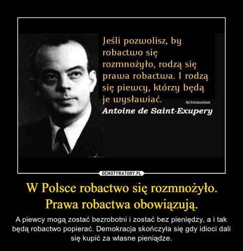 W Polsce robactwo się rozmnożyło. Prawa robactwa obowiązują.