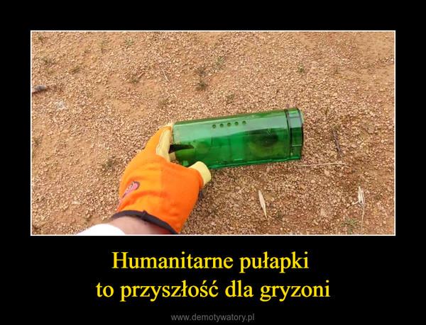 Humanitarne pułapki to przyszłość dla gryzoni –