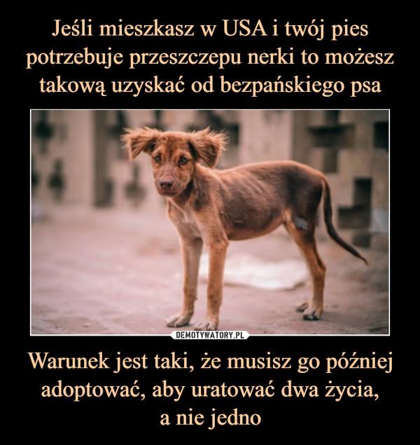 Warunek jest taki, że musisz go później adoptować, aby uratować dwa życia,a nie jedno –