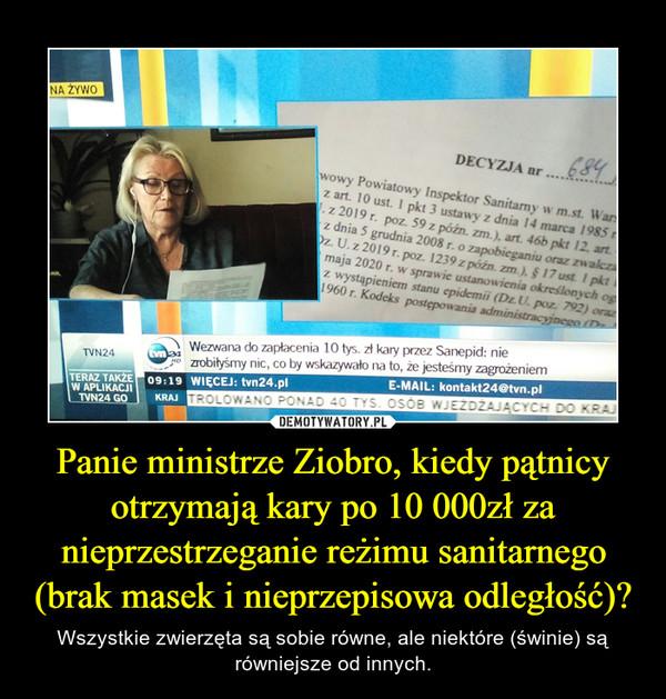 Panie ministrze Ziobro, kiedy pątnicy otrzymają kary po 10 000zł za nieprzestrzeganie reżimu sanitarnego (brak masek i nieprzepisowa odległość)? – Wszystkie zwierzęta są sobie równe, ale niektóre (świnie) są równiejsze od innych.