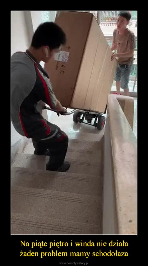 Na piąte piętro i winda nie działażaden problem mamy schodołaza –