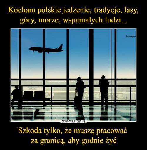 Kocham polskie jedzenie, tradycje, lasy, góry, morze, wspaniałych ludzi... Szkoda tylko, że muszę pracować  za granicą, aby godnie żyć