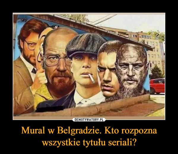 Mural w Belgradzie. Kto rozpozna wszystkie tytułu seriali? –