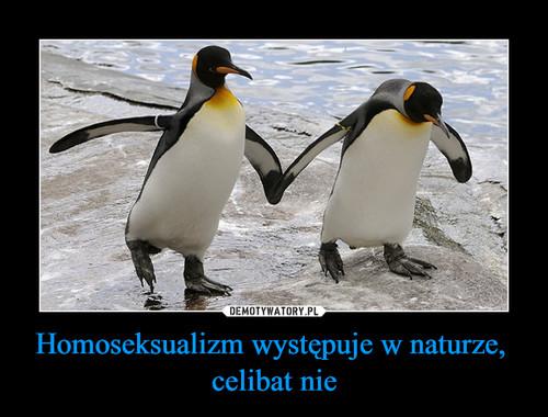 Homoseksualizm występuje w naturze,  celibat nie