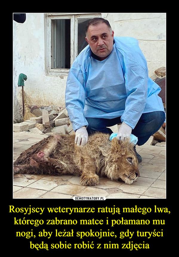 Rosyjscy weterynarze ratują małego lwa, którego zabrano matce i połamano mu nogi, aby leżał spokojnie, gdy turyści będą sobie robić z nim zdjęcia –