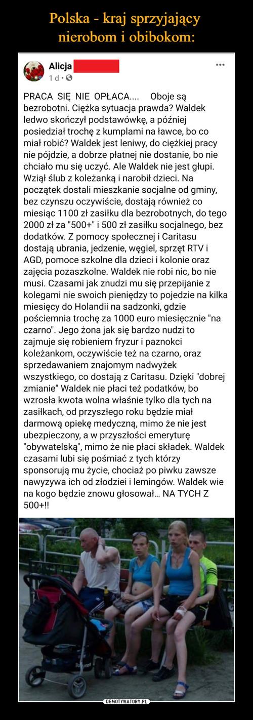 Polska - kraj sprzyjający  nierobom i obibokom: