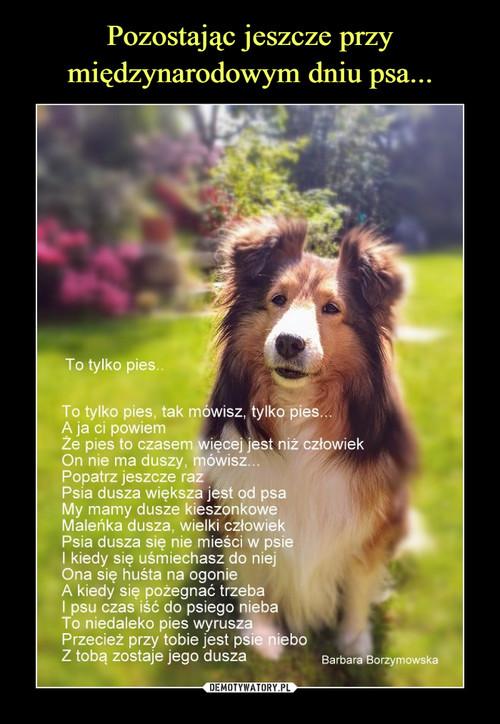 Pozostając jeszcze przy międzynarodowym dniu psa...