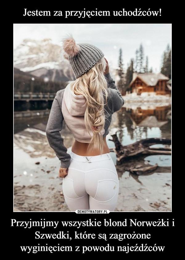 Przyjmijmy wszystkie blond Norweżki i Szwedki, które są zagrożone wyginięciem z powodu najeźdźców –
