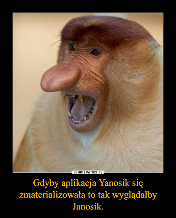 Gdyby aplikacja Yanosik się zmaterializowała to tak wyglądałby Janosik. –