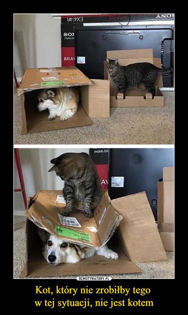 Kot, który nie zrobiłby tego w tej sytuacji, nie jest kotem –