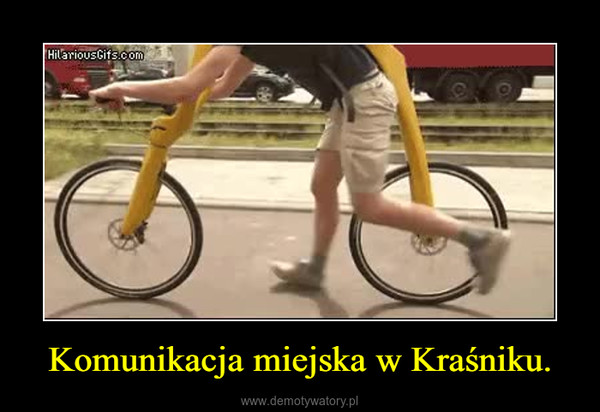 Komunikacja miejska w Kraśniku. –