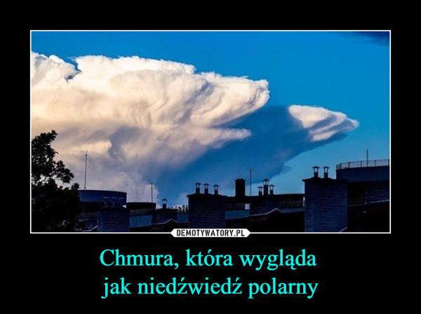 Chmura, która wygląda jak niedźwiedź polarny –