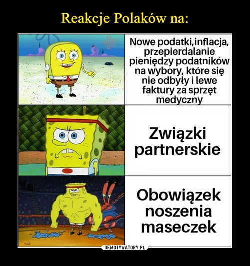 Reakcje Polaków na: