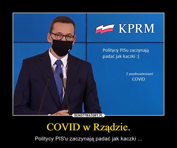 COVID w Rządzie. – Politycy PIS'u zaczynają padać jak kaczki ...