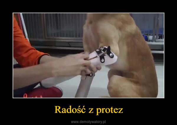 Radość z protez –