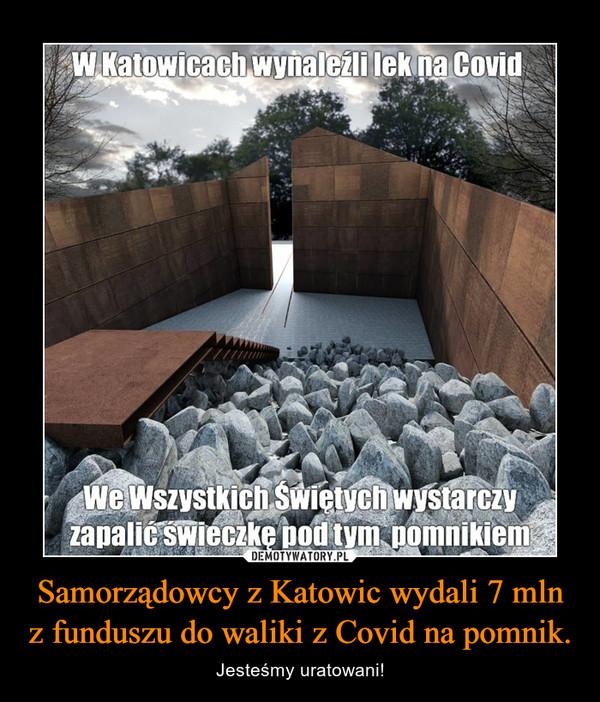 Samorządowcy z Katowic wydali 7 mln z funduszu do waliki z Covid na pomnik. – Jesteśmy uratowani!
