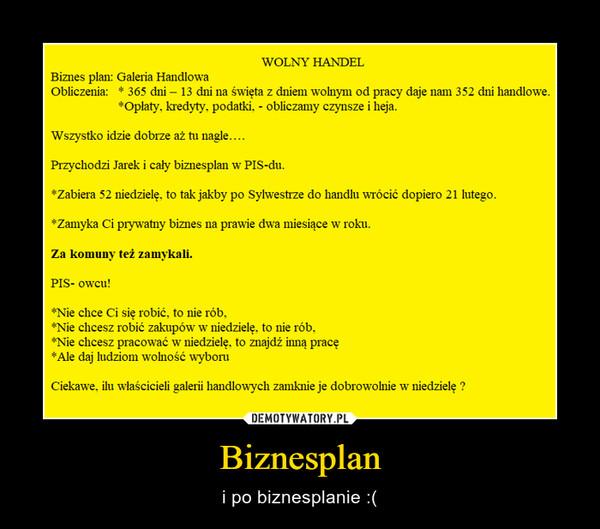 Biznesplan – i po biznesplanie :(